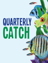Quarterly Catch
